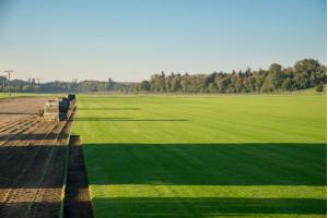 Travní koberec 201 - 500 m2